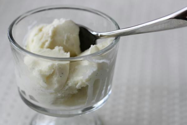 vanilla ice cream, philadelphia style