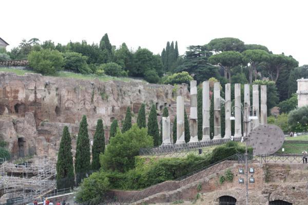 palentine hill/roman forum area rome