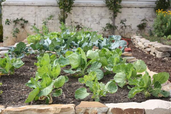 acre garden auburn
