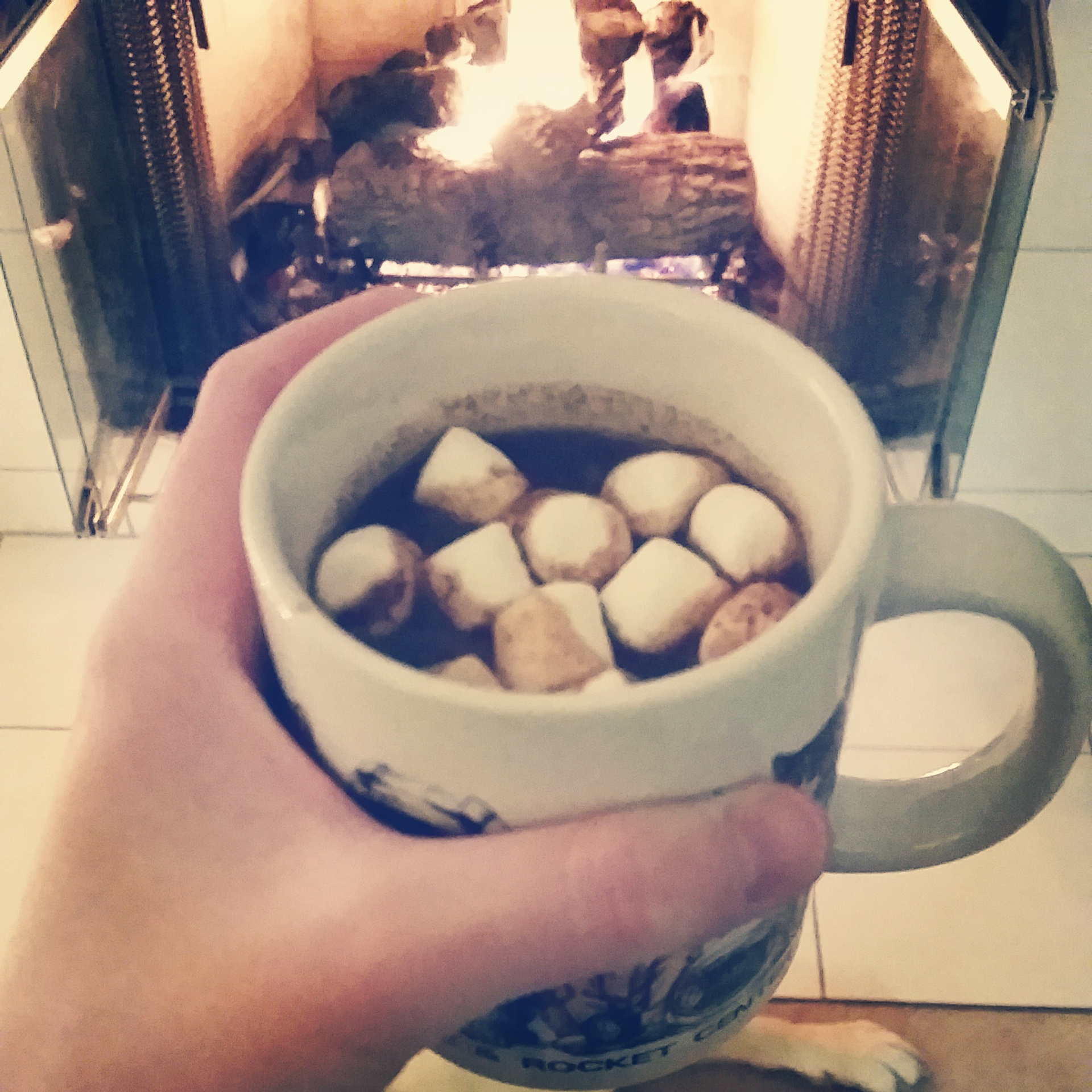 hot chocolate and a fire in the fireplace