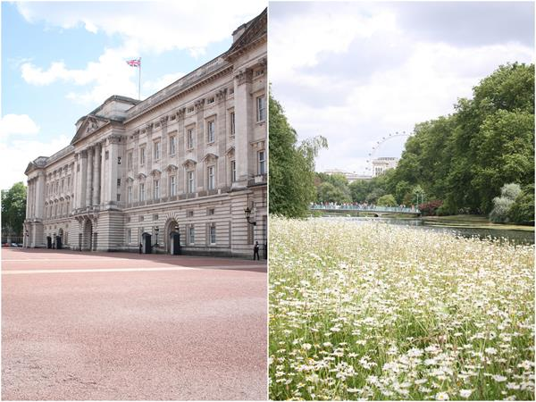 buckingham palace and st. james park
